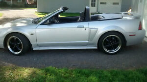 2001 Ford Mustang Cabriolet Manuelle