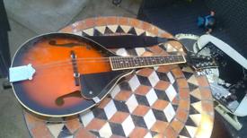 Used Mandolins for sale - Gumtree