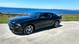 2014 Mustang V6 Automatic Transmission. Asking  $19700