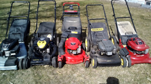 Well Serviced Lawnmowers Ready to Mow. Trade Ins Welcome