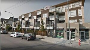 801 85 EIGHTH AVENUE, NEW WEST