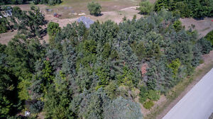 Build your dream home on this 1 acre property!