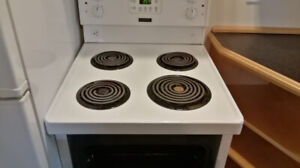 "24"" Wide Apartment Cooking Range"