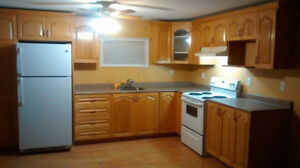 Two bedroom basement apartment in mount pearl