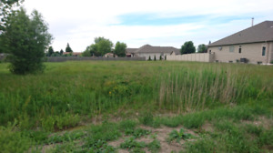 Serviced 1/3 acre lot on Lakeshore