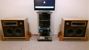 JBL CUSTOM SPEAKERS / MONITORS