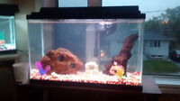 30 gallon with gold fish or with out
