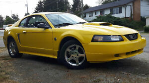 *REDUCED*2004 40th anniversary Ford Mustang Coupe (2 door)