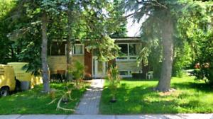 Chambre A Louer Maison Privé RiveSud 400$m 438-738-1159