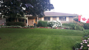 Peter Forsythe Lawn Care in Grimsby