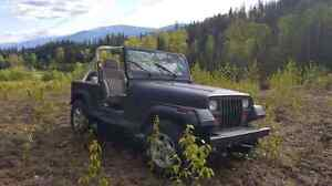 Jeep 1988 yj wrangler (reduced)