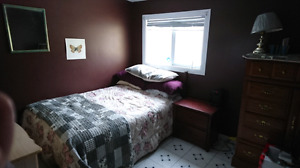 Room for rent in 3 bedroom downtown house