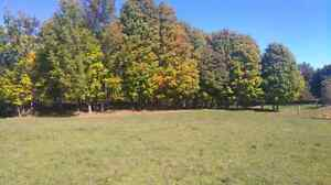 6 Acre Building Lot with Drilled Well