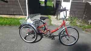 Fiori - Parklane adult tricycle - great cond.