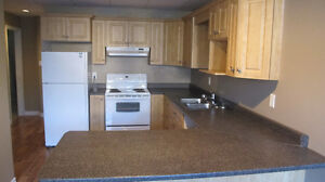 2 bedroom in law suite everything included