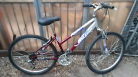 Raleigh explorer mountain bike