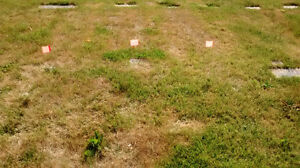 two burial plots