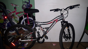 Kranked mountain bike