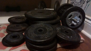 Over 20 Weights (2.5 to 25 lbs) for 50$ OBO