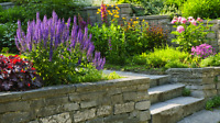 Refresh your landscaping expectation// Je parle aussi Francais