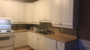 Used Kitchen for sale (Cabinets; Countertop & Appliances )