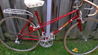 VINTAGE CLASSIC CAMBIO RINO MIXTE(MALE/FEMAL) FRAME WITH BIKE RA