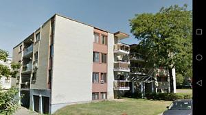 Appartement à louer à Anjou