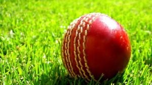 Cricket: Fast bowlers required