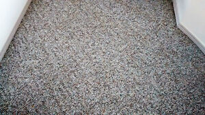 CARPET For Sale, Used! Still has Quick 'Bounce Back'