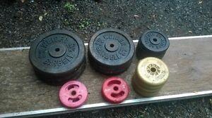 Weider Steel Weights