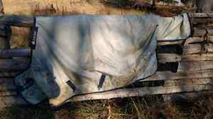"69"" horse blanket for sale Belleville Belleville Area image 3"
