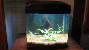 REDUCED! Aquarium - 14G Oceanic Biocube - NEED GONE!
