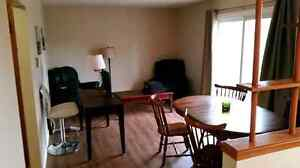 Spacious 2 bedroom apartment in Waterloo for January 2017 Kitchener / Waterloo Kitchener Area image 3