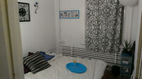 Looking for LGBT roommate to inhabit room. $265 (Parc