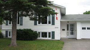 Bathurst - House with full basement apartment