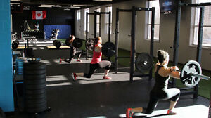 Amazing gym space for rent - Perfect for all personal trainers!
