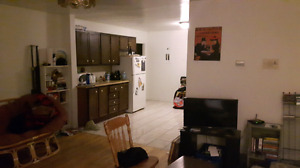 1 bedroom in a 3 bedroom apartment on Windsor St. available ASAP