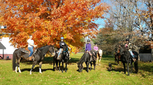 Trail Rides at Sand Valley Ranch and Stables