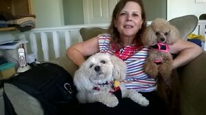 Deb's Pet & House Sitting Available in Langley&Surrounding Areas