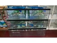 4x4ft fish tank