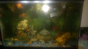 65 gallon fish tank, fish, stand and accessories for  sale