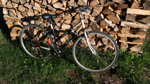 Women's bicycle for sale.  Great condition!