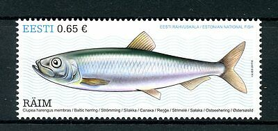 Estonia 2017 MNH Estonian National Fish Baltic Herring 1v Set Fishes Stamps
