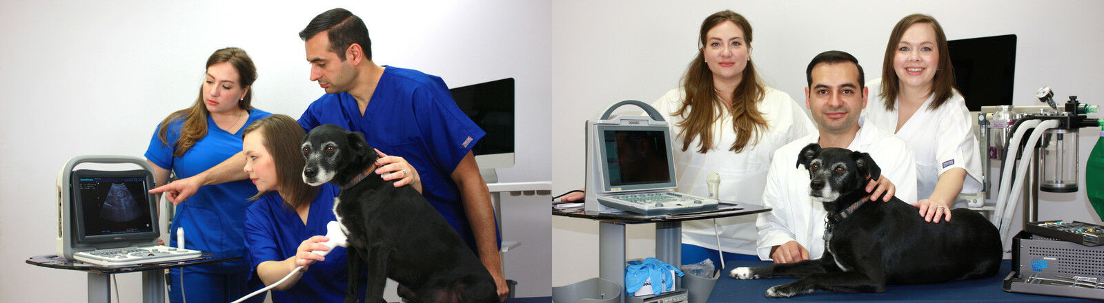 KeeboVet-Ultrasound-Scanners
