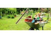Garden Services in Norwich - Experienced but NOT at professional prices & FREE quotes