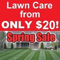 Book my WEEKLY lawn maintenance & Get a FREE copy of MY BOOK!!!!