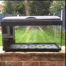 Large tropical fish tank (glass) 80cm x 40cm - comes with filter, heater, light and accessories!