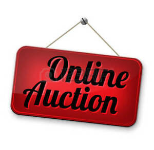 Facebook Online Auction Fundraiser to support local youth