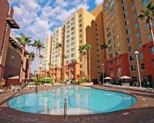 LAS VEGAS! Last Minute Cancellation! 1 bedroom suite available