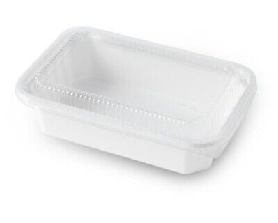 Eco Friendly Natural Fiber Food Container Togo Box With Clear Lid 25ct